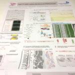 espace copie communication grand format poster papier